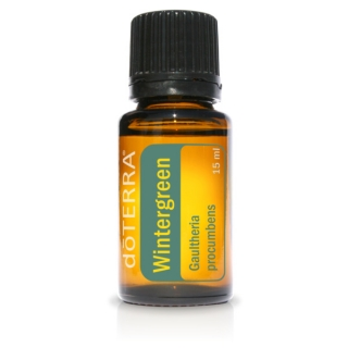 Wintergreen (Wintergreen) 15ml